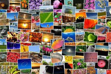 24 מאגרי תמונות מומלצים בחינם/ בתשלום הטובים ביותר לשימוש 2021