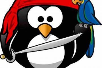 4 טיפים שיעזרו לכם להתמודד מול פינגווין בזמן אמת